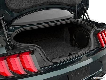 Ford Mustang Coupe BULLITT 2019 - photo 3