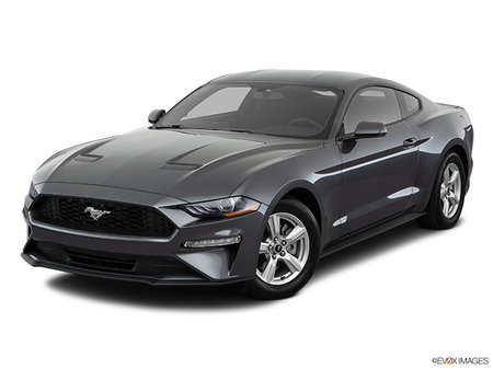 Ford Mustang Coupe EcoBoost 2019 - photo 2