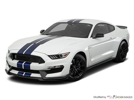 Ford Mustang Shelby GT350 2019 - photo 1