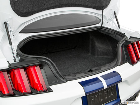 Ford Mustang Shelby GT350 2019 - photo 2