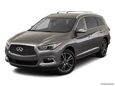 INFINITI QX60 PROACTIVE 2019 - photo 2