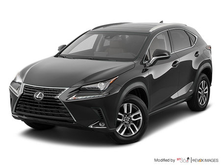 Lexus NX 300h 2019 - photo 1