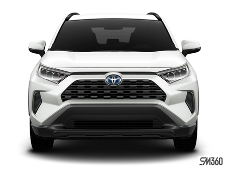 Toyota RAV4 Hybrid LE 2019 - photo 3