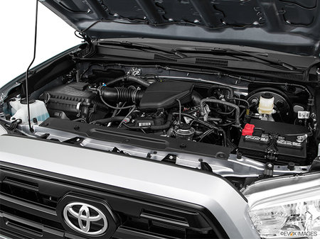 Toyota Tacoma 4X2 ACCESS  CAB 6A 2019 - photo 3