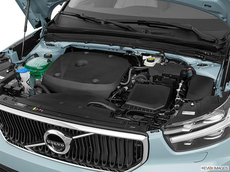 Volvo XC40 Momentum 2019 - photo 4
