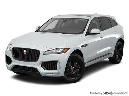 Jaguar F-Pace CHECKERED FLAG 2020 - photo 2