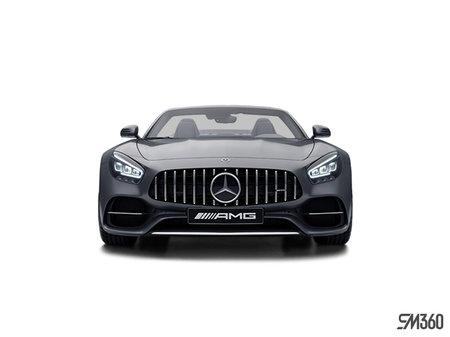 Mercedes-Benz AMG GT Roadster C 2020 - photo 4