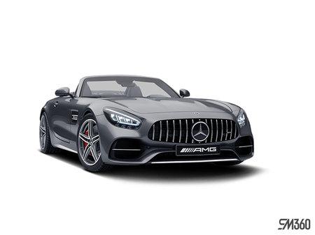 Mercedes-Benz AMG GT Roadster C 2020 - photo 2