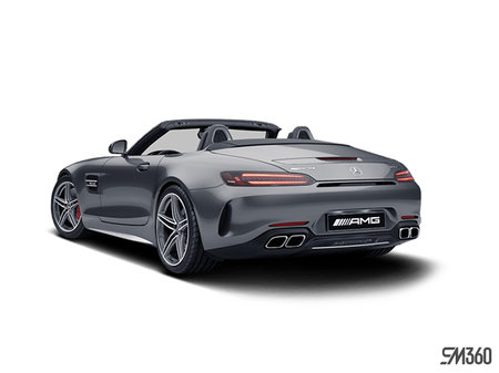 Mercedes-Benz AMG GT Roadster C 2020 - photo 2