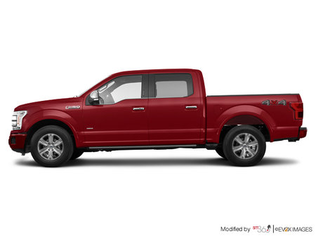 Ford F-150 PLATINUM 2019 - photo 1