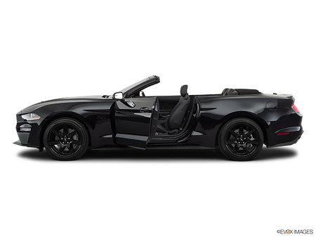 Ford Mustang Convertible GT Premium 2019 - photo 1