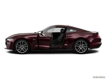 Ford Mustang EcoBoost Premium Fastback 2019 - photo 1