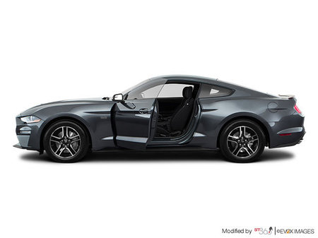 Ford Mustang GT Fastback 2019 - photo 1