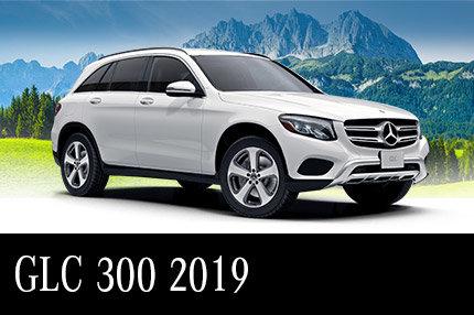 GLC 300 2019