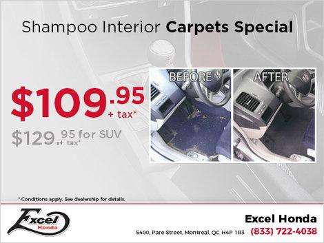 Carpets Shampoo