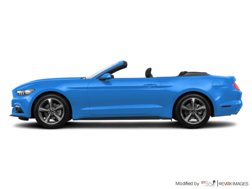 Grabber Blue