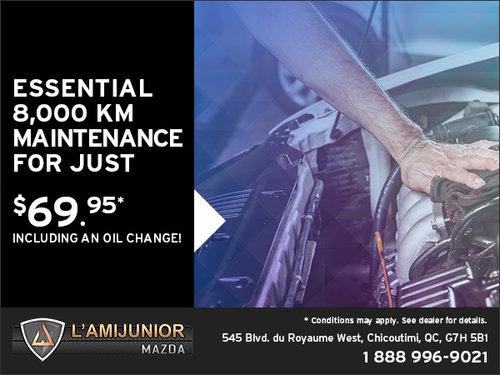 Essential 8,000 km Maintenance