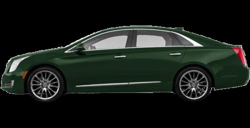 Dark Emerald Metallic