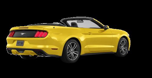 Triple Yellow