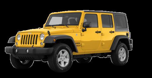 Baja Yellow