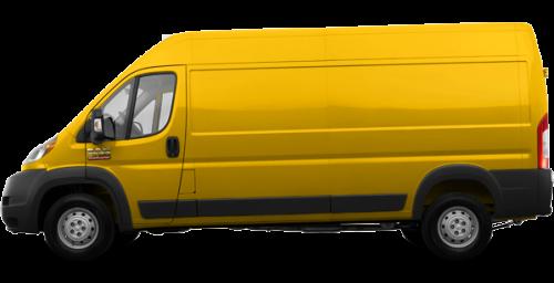 Broom Yellow