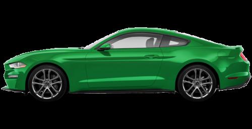 Need for Green w/ Ebony Racing Stripe