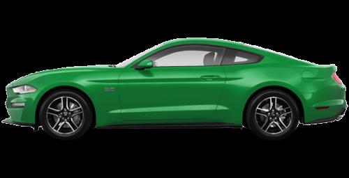 Vert vif avec bande décorative ébène