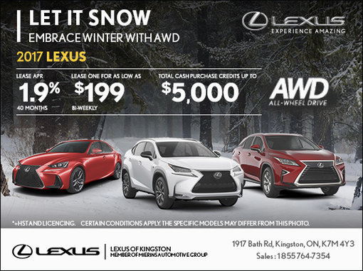 Let It Snow - Embrace Winter with AWD