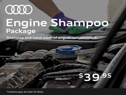 Engine Shampoo