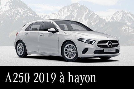 A250 2019