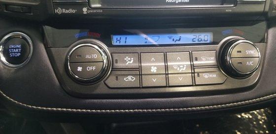 Toyota RAV4 LIMITED 2015 (13/20)
