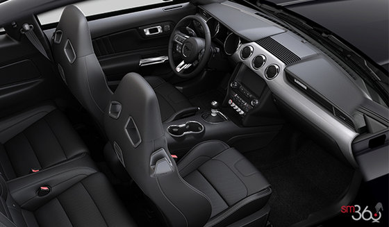 Ebony Recaro Leather