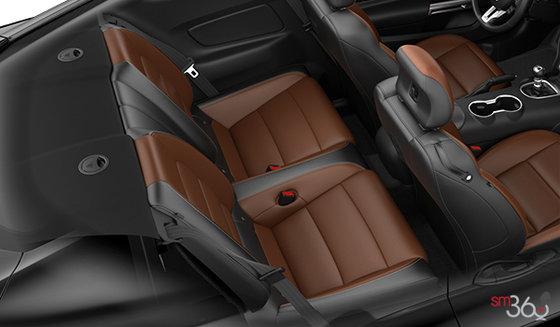 Tan Leather (4C)