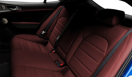 Red Nappa Leather
