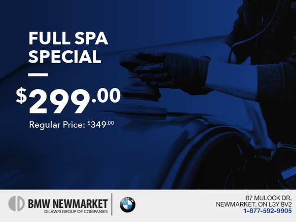 Full Spa Special
