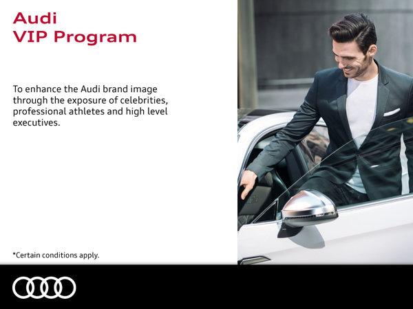 Audi VIP Program