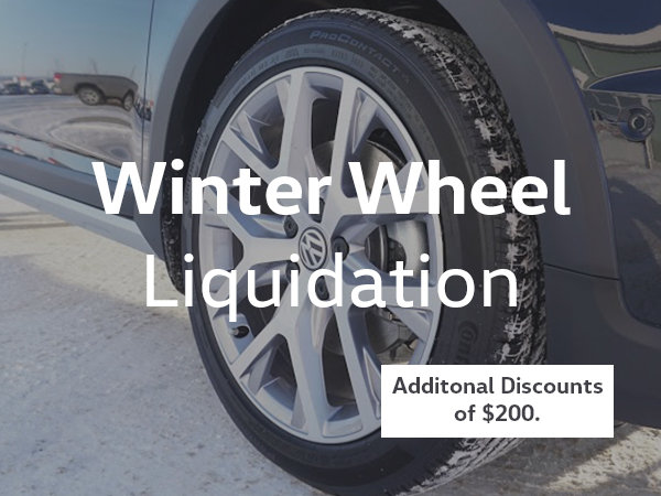 Winter Wheel Set Liquidation