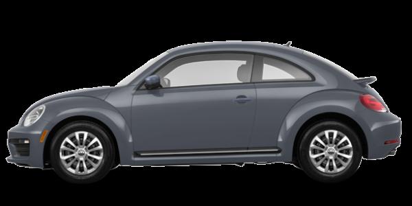 2018  Beetle