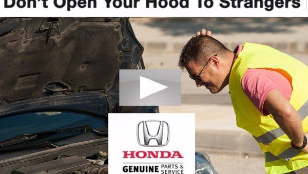 Bruce Honda Multipoint Inspection