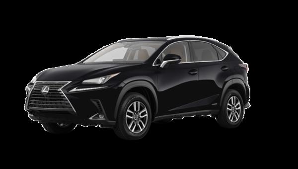 Lexus NX 300h (2) 2019
