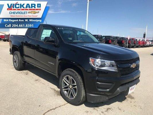2019 Chevrolet Colorado WT  - $241 B/W