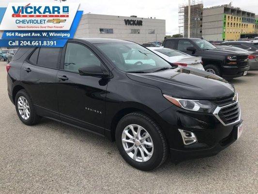2019 Chevrolet Equinox LS  - $176.78 B/W
