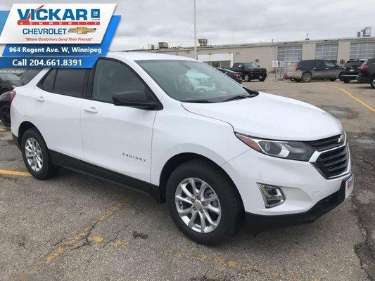 2019 Chevrolet Equinox LS  - $173.97 B/W