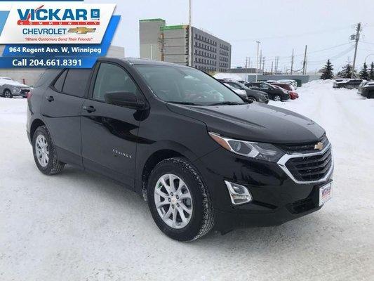 2019 Chevrolet Equinox LS  - $178.67 B/W
