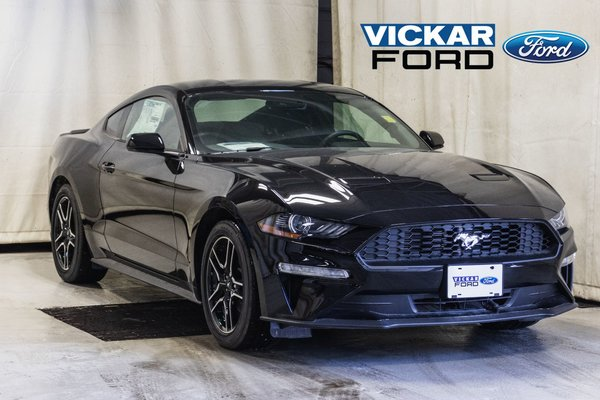2019 Ford MUSTANG FASTBACK ECOBOOST