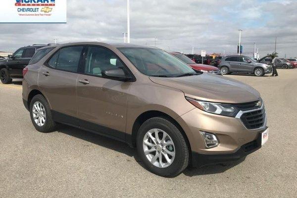 2019 Chevrolet Equinox LS  - $192.82 B/W