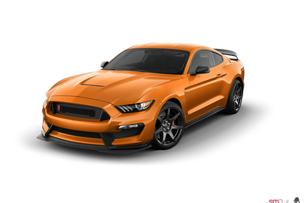 2019 Ford Mustang Shelby GT350R