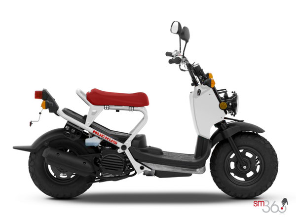 STANDARD Honda RUCKUS 2017 for sale in Ottawa | Mierins Automotive Group