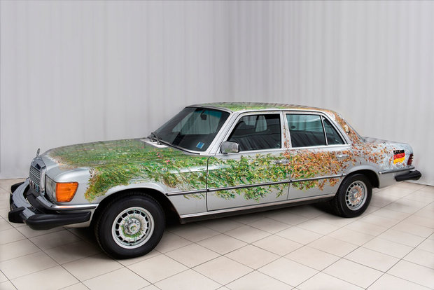 Mercedes-Benz Car for All Seasons