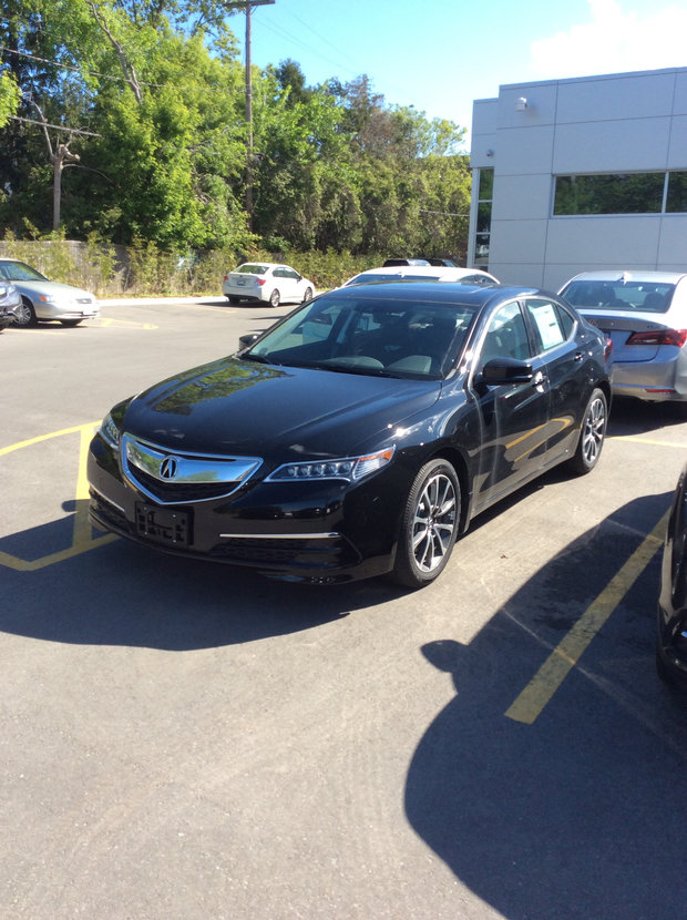 TLX great service all around